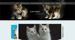 Preview of cattery-casato.nl