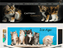 Tablet Preview of cattery-casato.nl